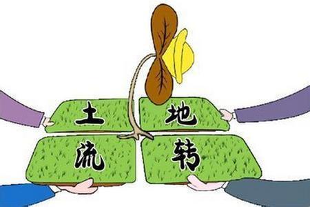 """跨省""""买地""""有望年底实现 北京跨省买一亩耕地要90万"""
