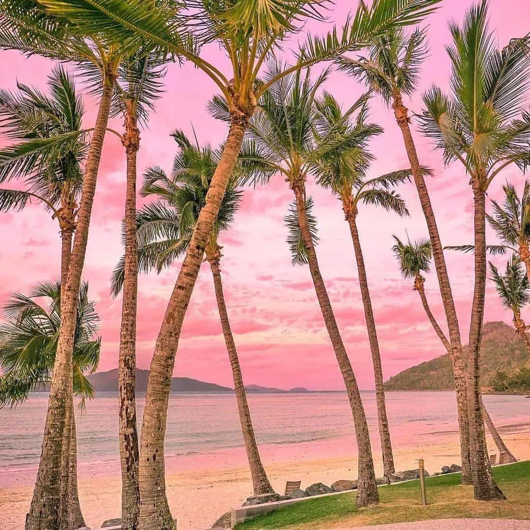 巴厘岛直飞1小时 印尼这一片粉色沙滩美炸了