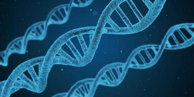 以色列科学家展示全球首个孕期性别选择技术方案