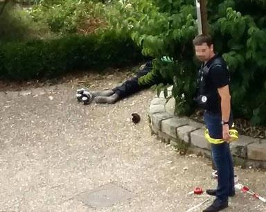 法国恐袭:神父拒绝跪下 在教堂被割喉斩首