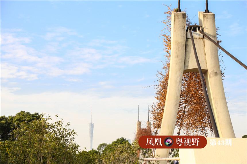 在花桥桥底,可以看到3公里外的广州塔。