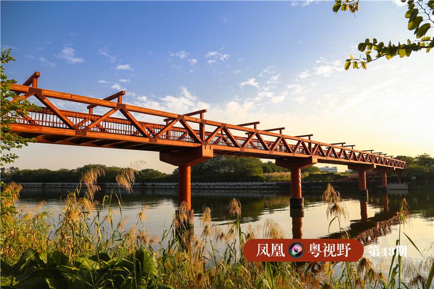 """海珠湿地紧靠珠江,珠江一天有两次潮汐,相当于整个海珠湿地每天可以""""呼吸""""两次,这为雨洪调蓄提供了天然基础。图为:石榴岗河上的贯览桥。"""
