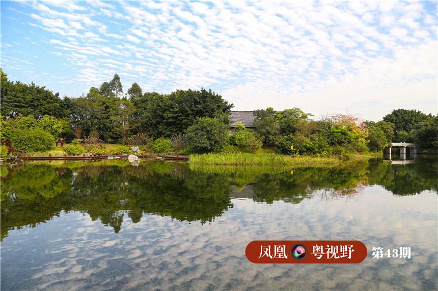 绿心湖的湖水的清澈见底,肉眼可以清晰地看到水底的海草。天气晴朗的时候,蓝天白云倒映在湖底,十分壮观。