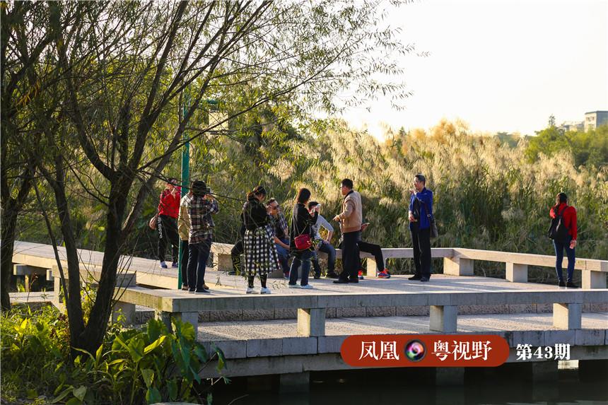 图为:游客在湿地风景中流连。