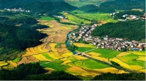 """九龙湖 资溪大觉山以全国罕见,江西第一的绿色植被,被誉为""""生态王国"""