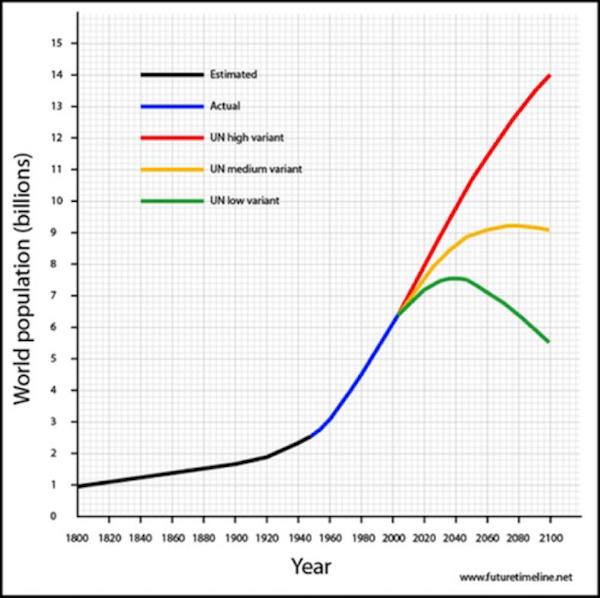 100年,全球人口预测,实际和联合国未来预测走势图.-全球人口危
