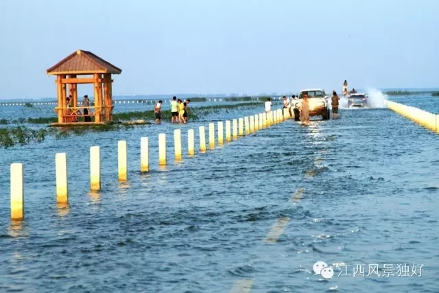 江西最美水上公路,像极了《千与千寻》里的那条水路!