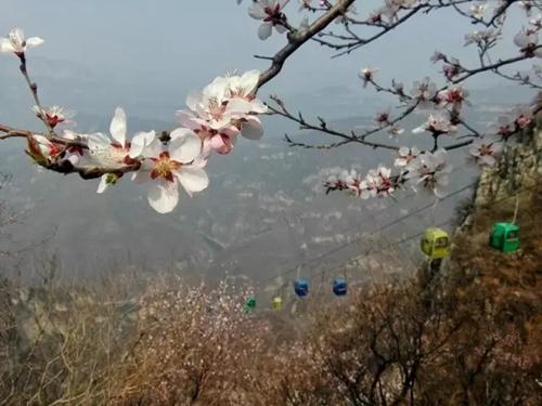 青天河全国手机摄影大赛冬季赛获奖名单揭晓