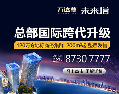万达尊·未来塔200平起整层发售
