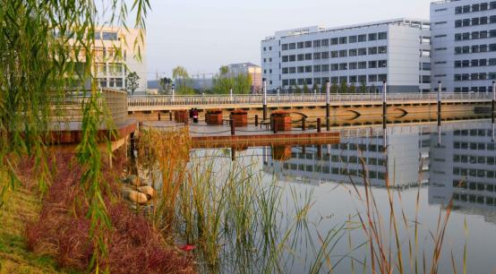 龙湖东校区-安徽财经大学校园风光图片