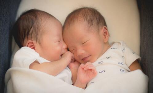 【星娱TV】李心洁晒双胞胎儿子满月照 宝宝们相互依偎好甜密