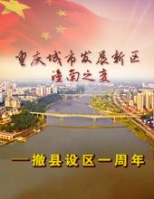 潼南撤县设区一周年