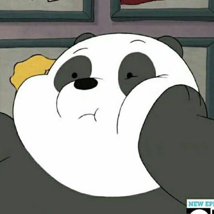 小熊猫肉肉越狱成功 证明了自己只是虚胖|动图集