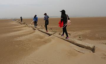 鄱阳湖水位持续走低后的景象