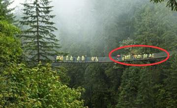 全球最吓人的5座桥