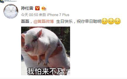 孙红雷微博截图