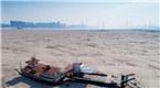 长江中下游进入枯水期 武汉段江心现沙洲