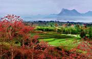 多种旅游形式并举 旅游渐成昌江经济新龙头
