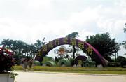 琼海:高标准建设东部中心城市 打造琼海美丽乡村  2.0版