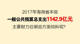 2017年海南的钱袋子打算这么花