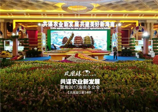 凤凰眼第54期|共谋农业新发展 聚焦2017海南冬交会