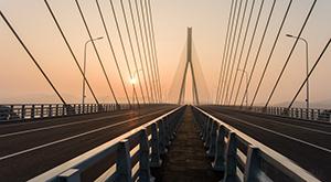 """安徽望东长江大桥已于2017年元旦前夕正式通车(图)width=""""145"""""""