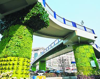 """过街天桥穿上""""绿靴子"""""""