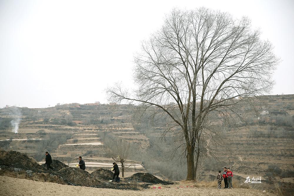 爷爷老家门口的坟。几十年前种的小树下,三个孩子跟在我父母身后看他们烧纸。等我过去给先人磕头的时候,他们跑到我身后,磕得格外认真。