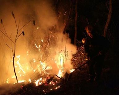 湖北汽车工业学院后山起火 山火从山脚一直烧到半山腰