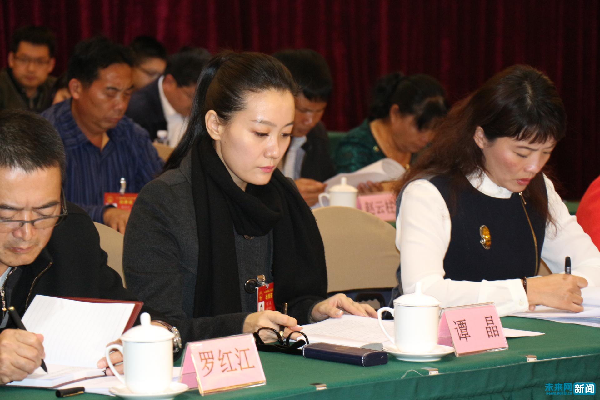 谭晶首次出席云南代表团会议:已不再是军人 (图)