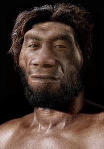 兰台说史河南新发现化石终结中国人非洲起源假