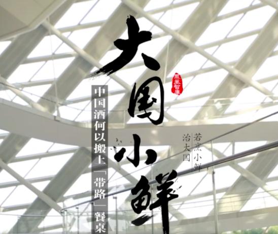 """《大国小鲜特别篇》:中国酒何以搬上""""带路""""餐桌"""