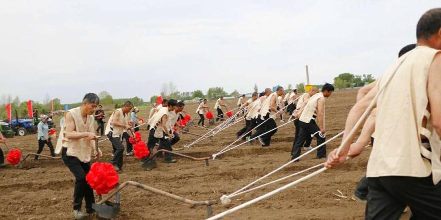图说首届中国铁力农耕文化节