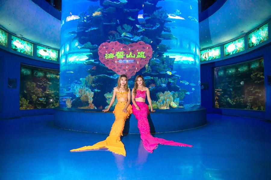 青岛海底世界美人鱼_\