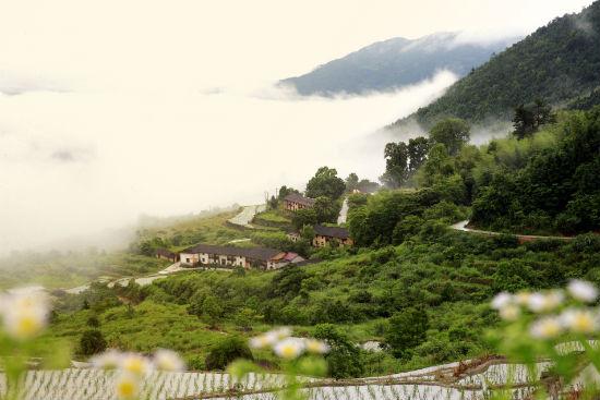 江西修水县的秀美乡村(黄喆摄)-江西修水 云上人家如画开 图