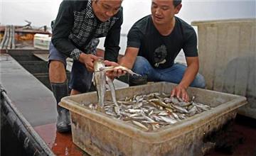 鄱阳湖渔民上岸记