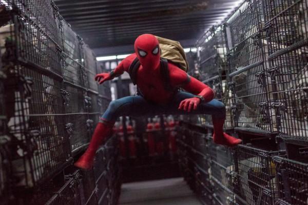 神速!新《蜘蛛侠》第一部还没上映续集已定档