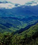江西一座一年四季刮南风的保护区