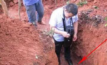 野外施工挖出巨大白蚁 那场面让人不寒而栗