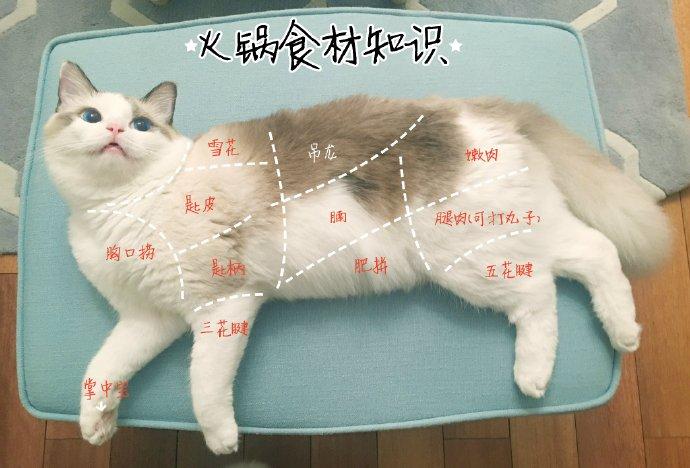 fun来了:四川人天性乐观 地震也别想让我屈服图片