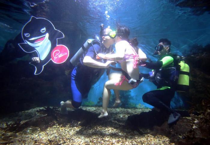 壁纸 海底 海底世界 海洋馆 水族馆 700_483