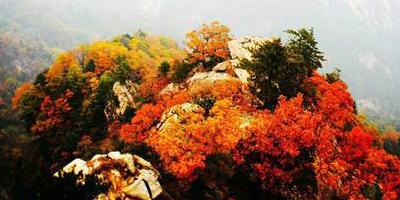 天瑞旅游邀你国庆假期开启登山、祈福、观景、养生之旅