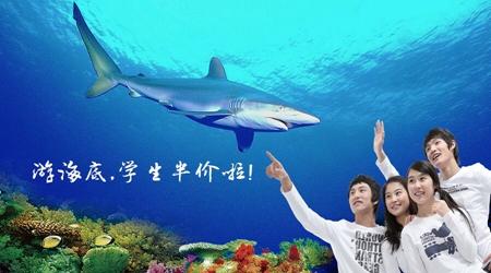 """十一来青岛海底世界享受半价""""童""""乐喽"""