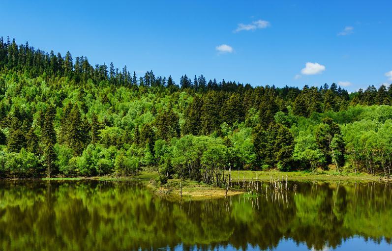 《建立国家公园体制总体方案》出炉 国家公园建设进入实质性阶段