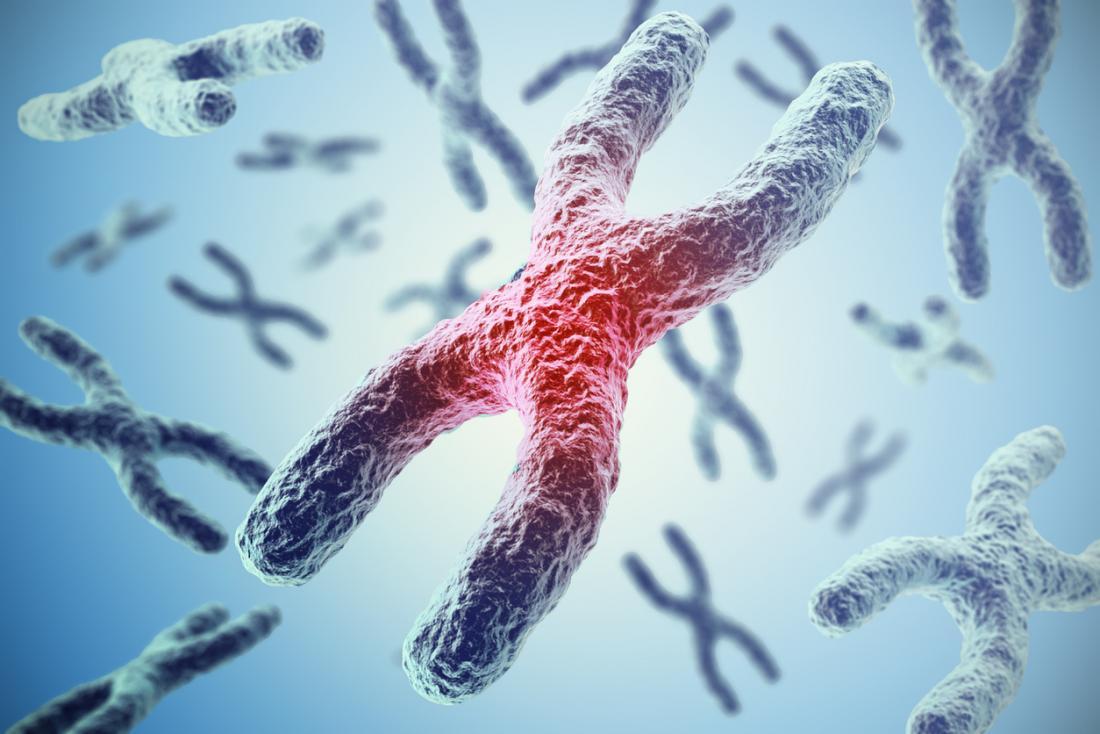科学家取得新突破:或能逆转细胞老化