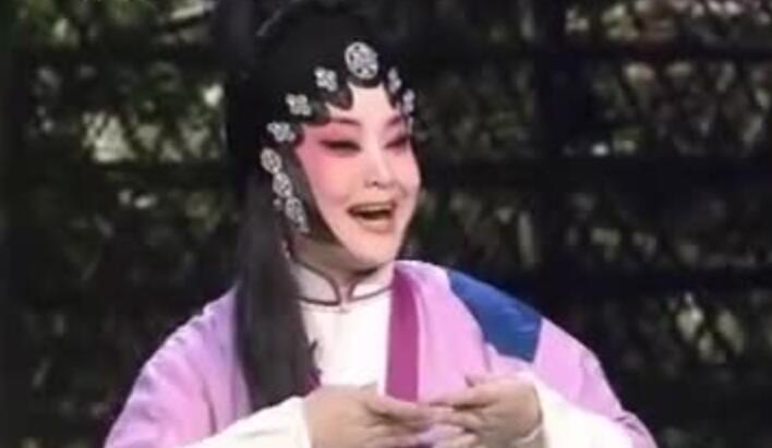 杨红艳《赵五娘吃糠》选段
