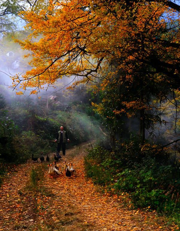 5个明信片级风景区,一揽湖湘最美秋景