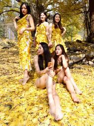 女学生穿落叶裙银杏林