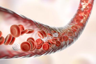 血脂决定你的寿命:4种食物常吃,血脂高不起来!