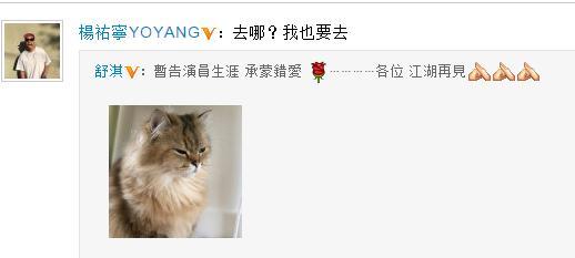 好友杨�v宁调侃舒淇暂别娱乐圈:去哪?我也要去